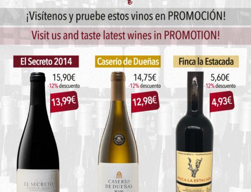 Vinos Casa Santi, new discounts to taste with us